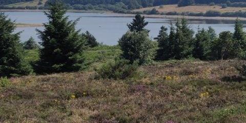 Profiter de la nature et de la paix dans le Haut-Languedoc