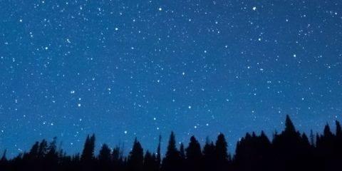7 jeux de camping auxquels vous pouvez jouer en soirée