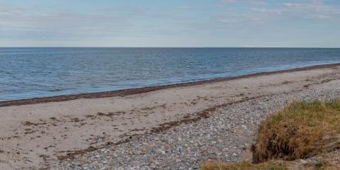 En vacances via internet avec les meilleures webcams nature d'Europe